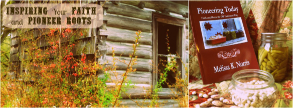 Branded Facebook Cover for Melissa K. Norris