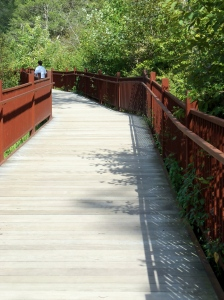 Anita Brooks Walking Bridge Photo