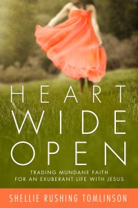 Heart Wide Open_n1