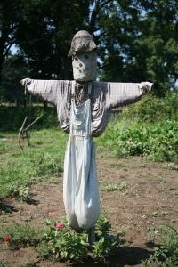 Scarecrow--Daniel Schwen