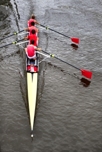 Coxed four from above